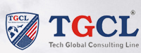 Tech Global Consulting Line